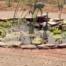 Water Garden Wilbraham